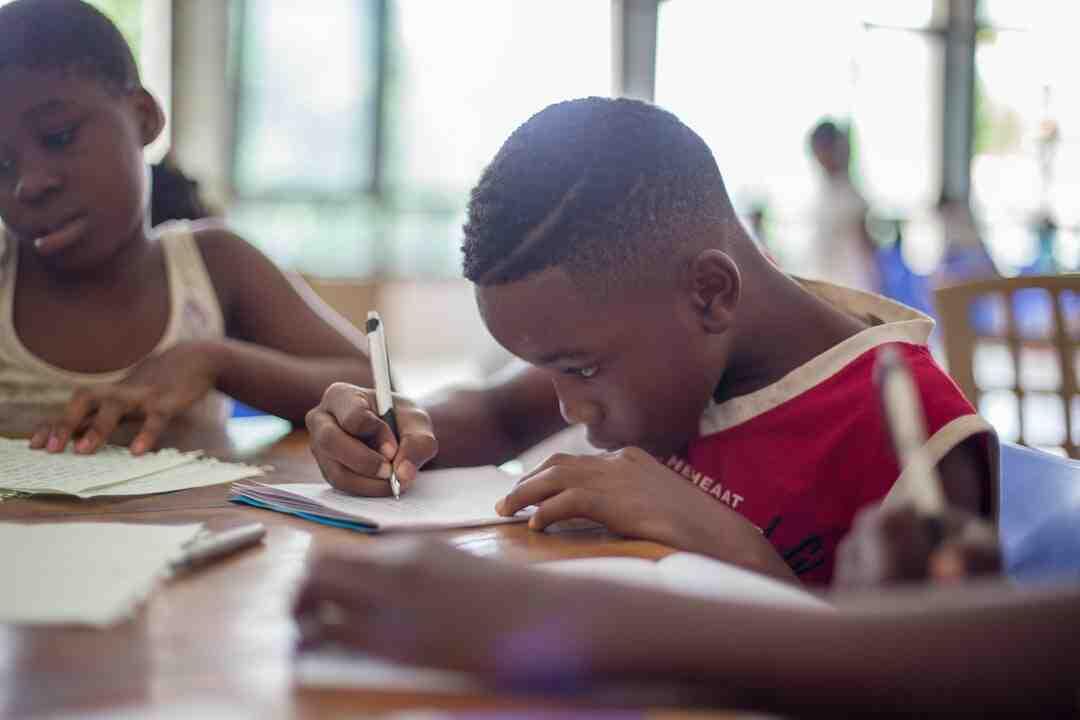Quel est le pays africain qui parle bien français 2020 ?